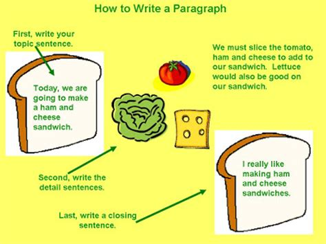 Parts of an essay in order